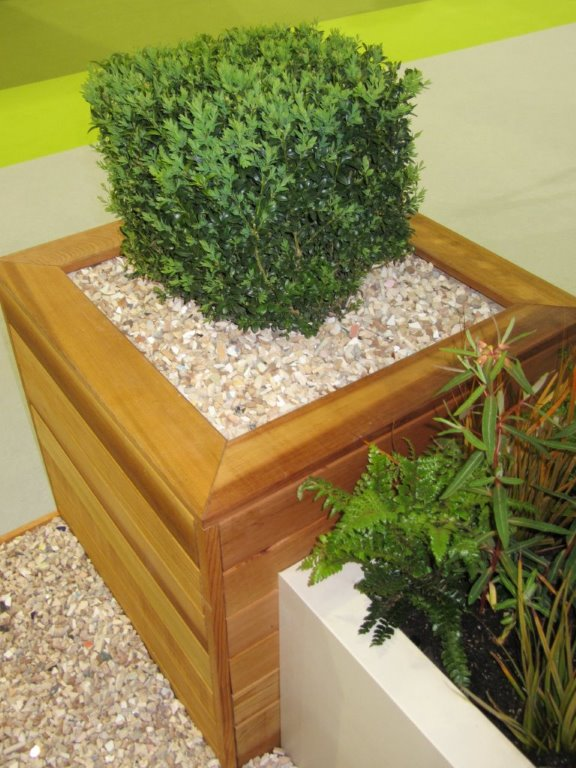cedar planter with box cube